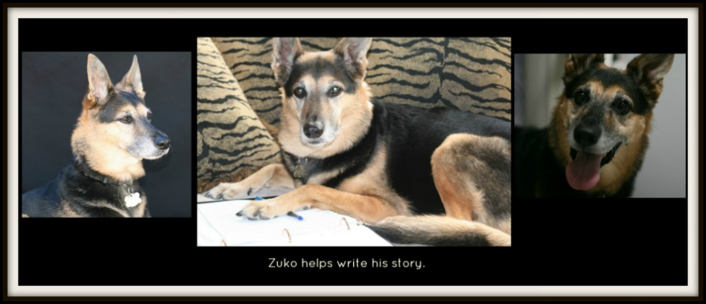 Zuko helps write his story