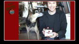 Zuko the Dog realizes the magic of Macy's